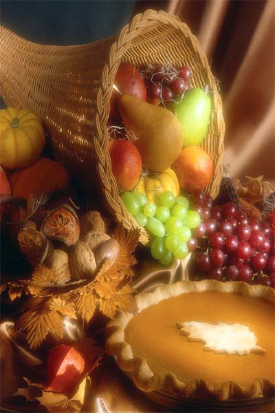 Did The Pilgrims Eat Turkey On Thanksgiving  Did the pilgrims eat peanuts and how long can I stall on