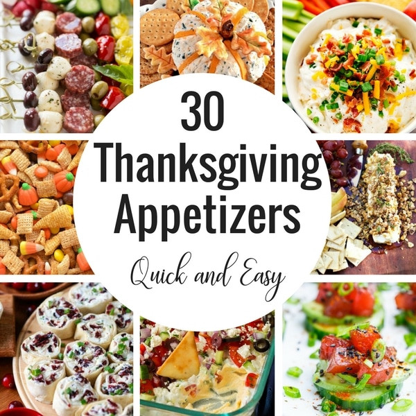Easy Thanksgiving Appetizers  30 Thanksgiving Appetizer Recipes Dinner at the Zoo