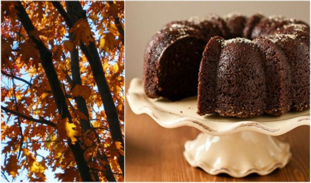 Fall Bundt Cake Recipes  Seasonal Baking 5 Fall Bundt Cake Recipes