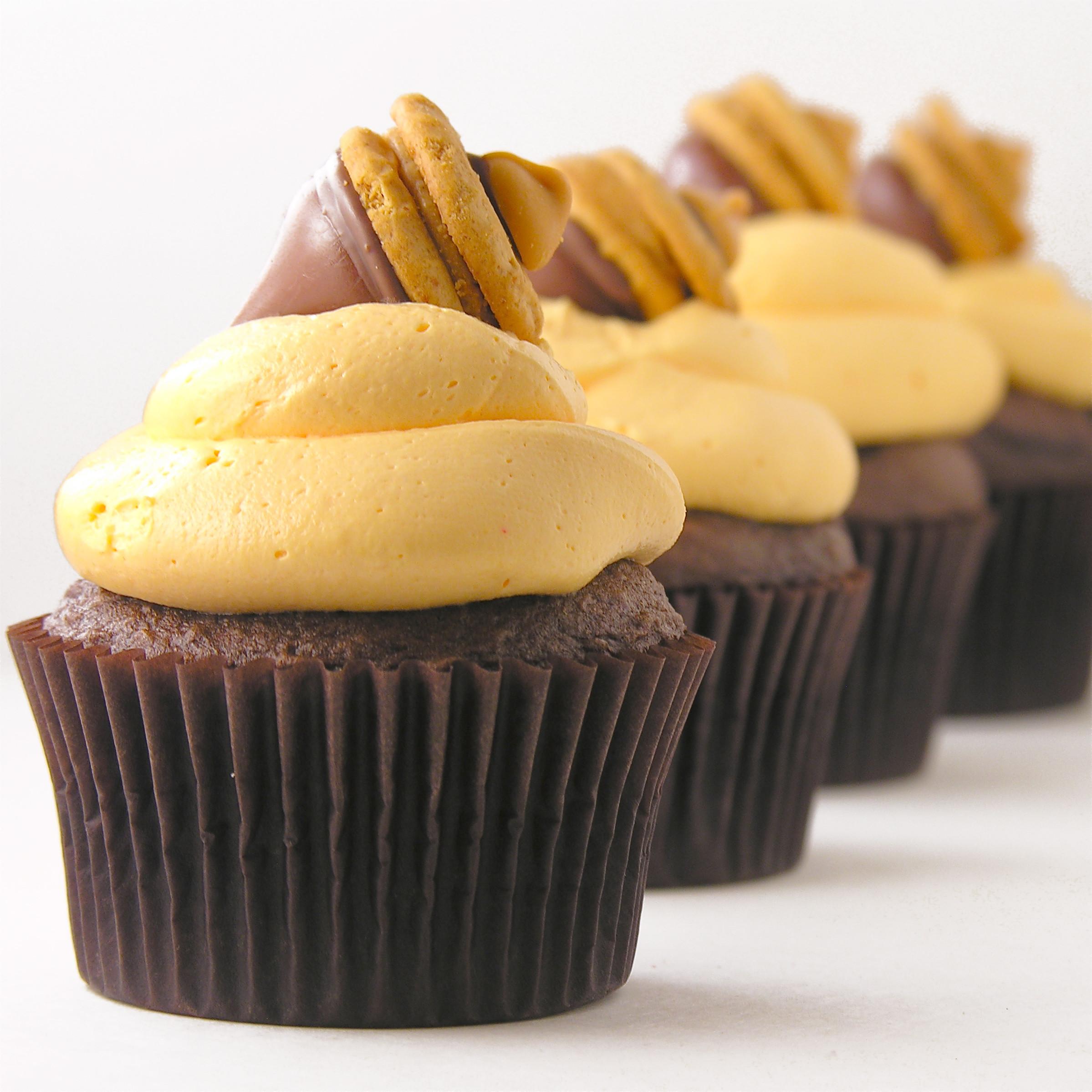 Fall Cupcakes Ideas  Fall Acorn Cupcakes