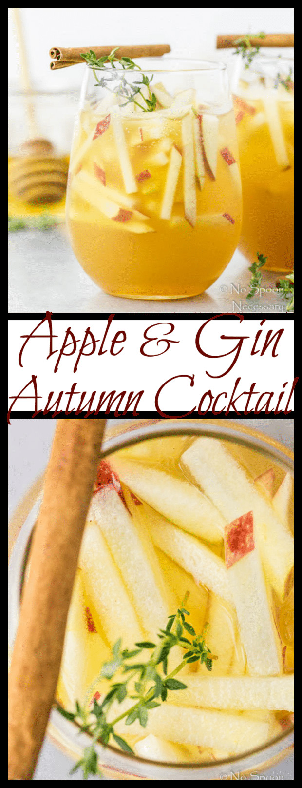 Fall Gin Drinks  Apple & Gin Autumn Cocktail No Spoon Necessary