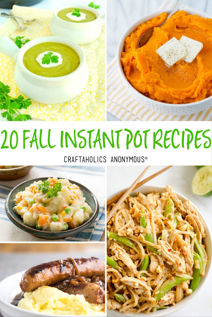 Fall Instant Pot Recipes  Craftaholics Anonymous