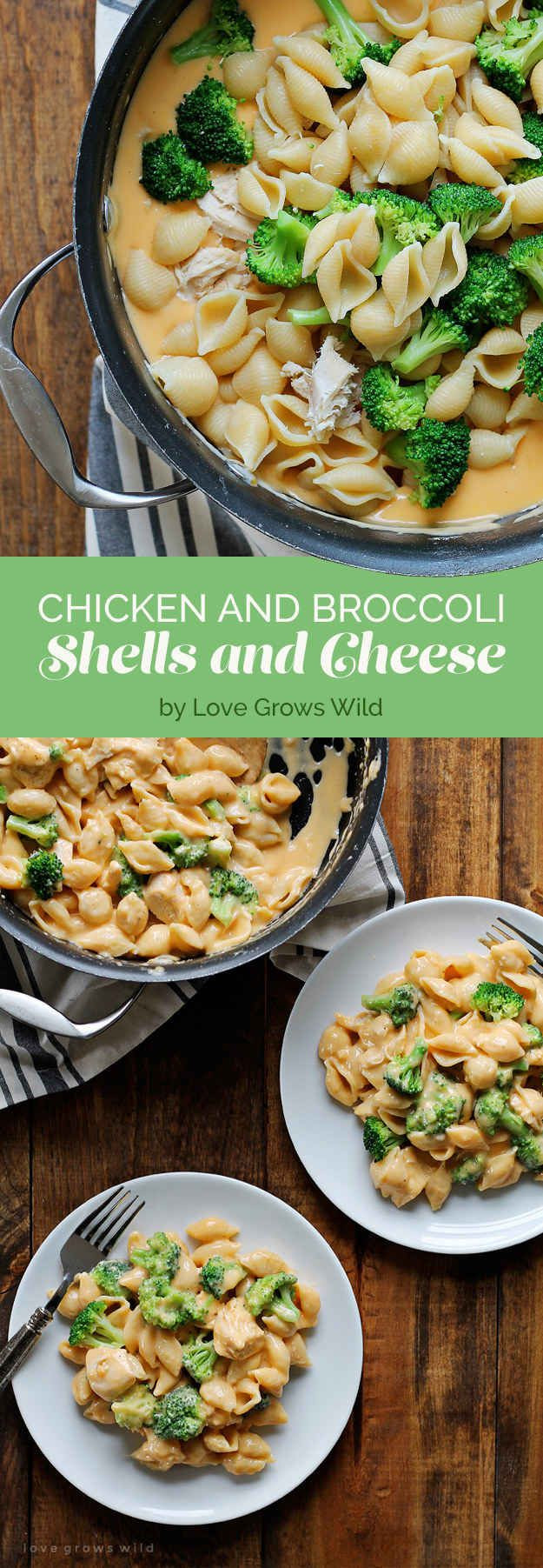 Fall Recipes Dinner  Best 25 Fall dinner recipes ideas on Pinterest