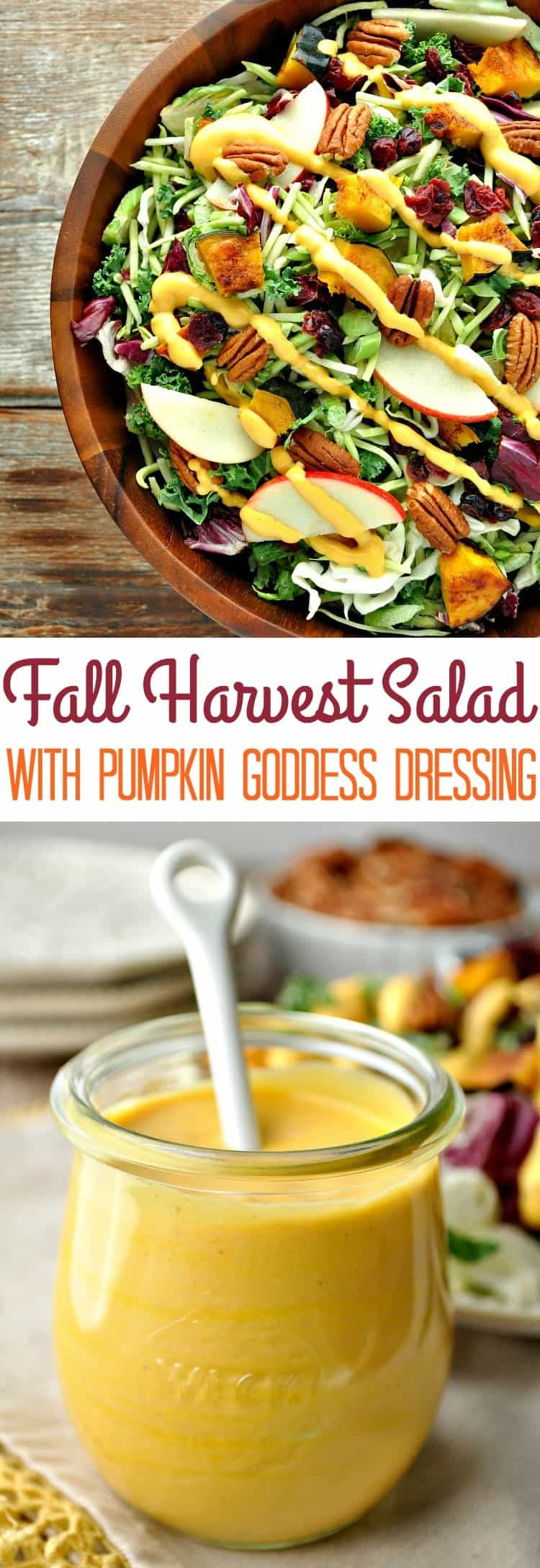 Fall Salad Dressings  Healthy Thanksgiving Side Dish Fall Harvest Salad with