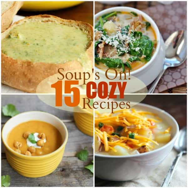 Fall Soup And Stew Recipes  15 Soup & Stew Recipes for Fall Happiness Food Fanatic