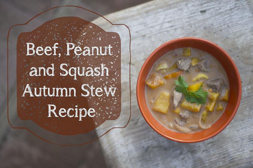 Fall Stew Recipes  Beef Peanut and Squash Autumn Stew Recipe – Domestic Geek