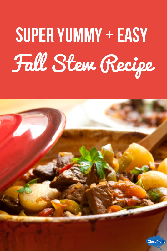 Fall Stew Recipes  Fake Supermom Recipe 1 Fall Stew