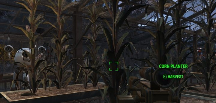 Fallout 4 Corn  Fallout 4 Get Purified Water and Food for Farming