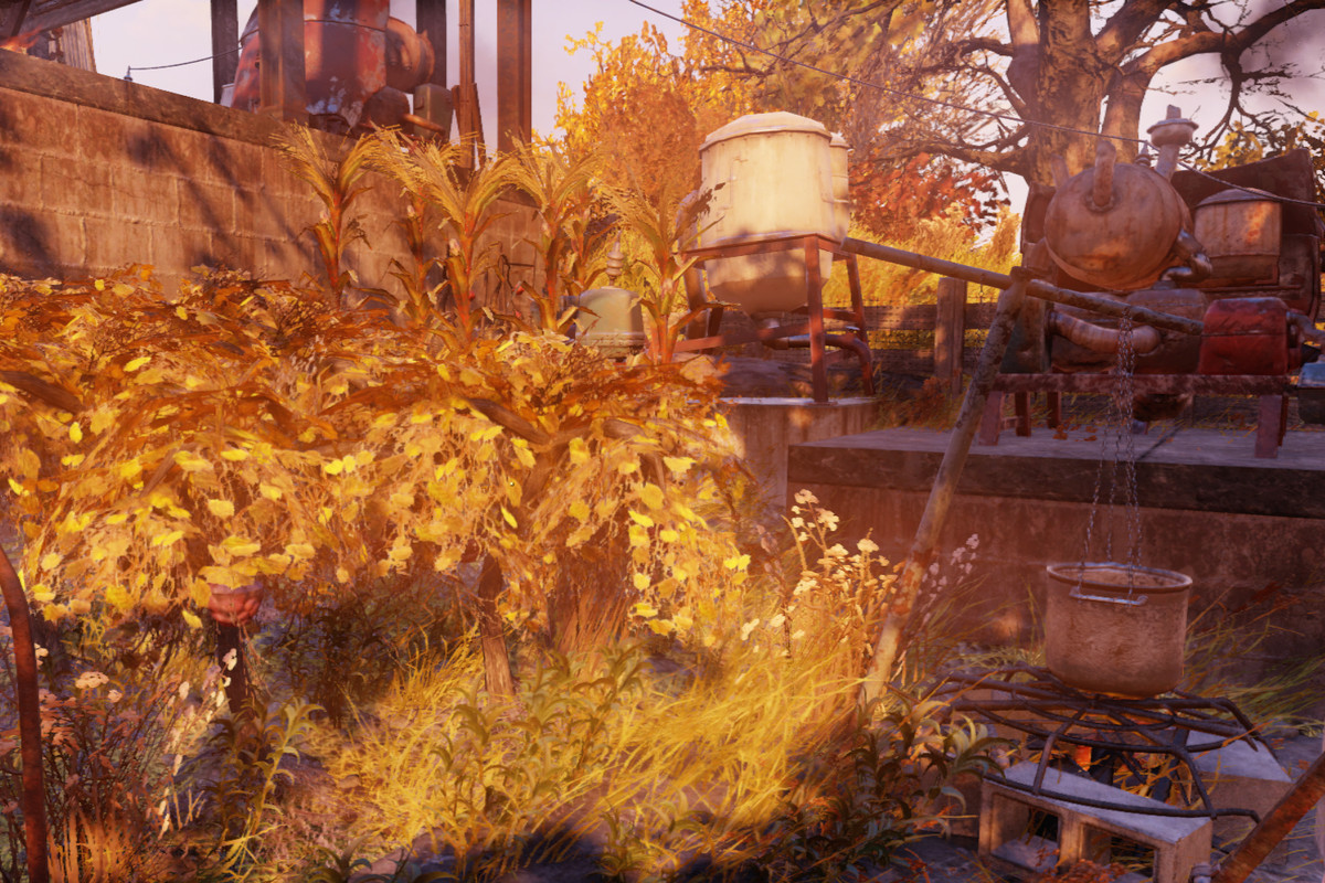 Fallout 4 Corn  Fallout 76 Guide How to make an Adhesive farm Polygon