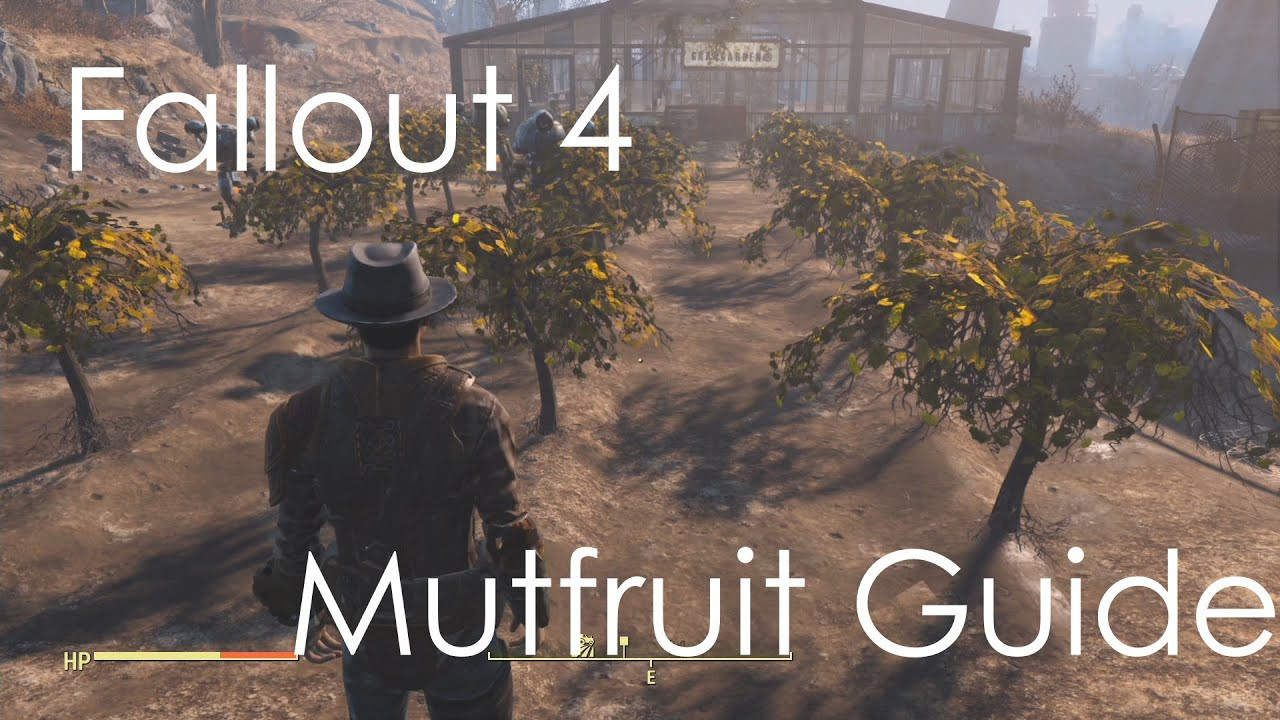 Fallout 4 Corn  Fallout 4 Easily Find Mutfruit Tato Corn Guide