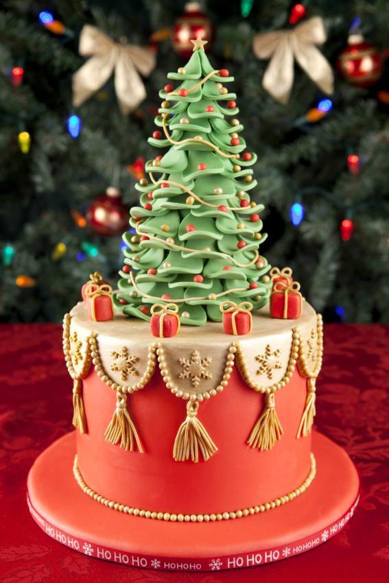 Fondant Christmas Cakes  Top 10 Christmas Cake Designs [Slideshow]