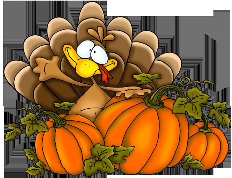 Free Turkey Clipart Thanksgiving  Thanksgiving Turkey PNG Clipart