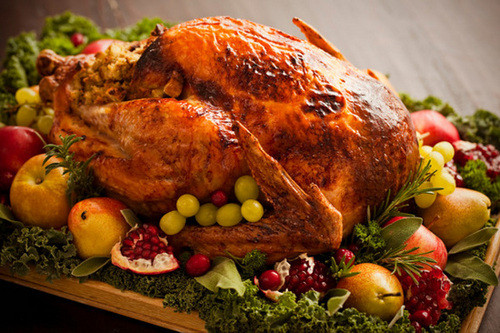 Fresh Turkey For Thanksgiving  Picking a turkey Frozen or fresh Organic Heritage What
