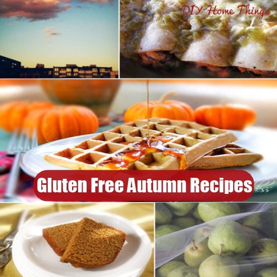 Gluten Free Fall Recipes  20 Exciting Gluten Free Autumn Recipes
