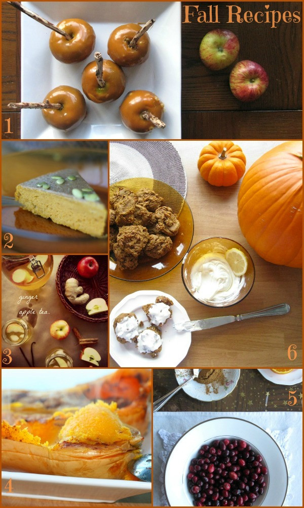 Gluten Free Fall Recipes  Gluten Free Fall Recipes The Best of this Life