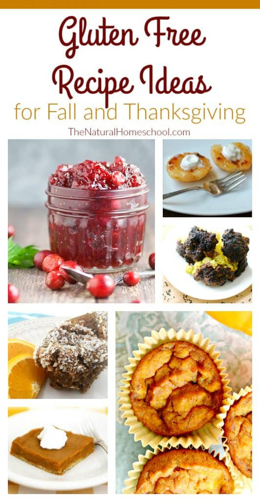 Gluten Free Fall Recipes  Yummy & Easy Fall Desserts Recipes The Natural Homeschool