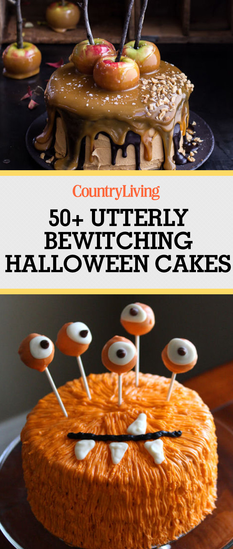 Halloween Cakes Recipes With Pictures  61 Easy Halloween Cakes Recipes and Halloween Cake