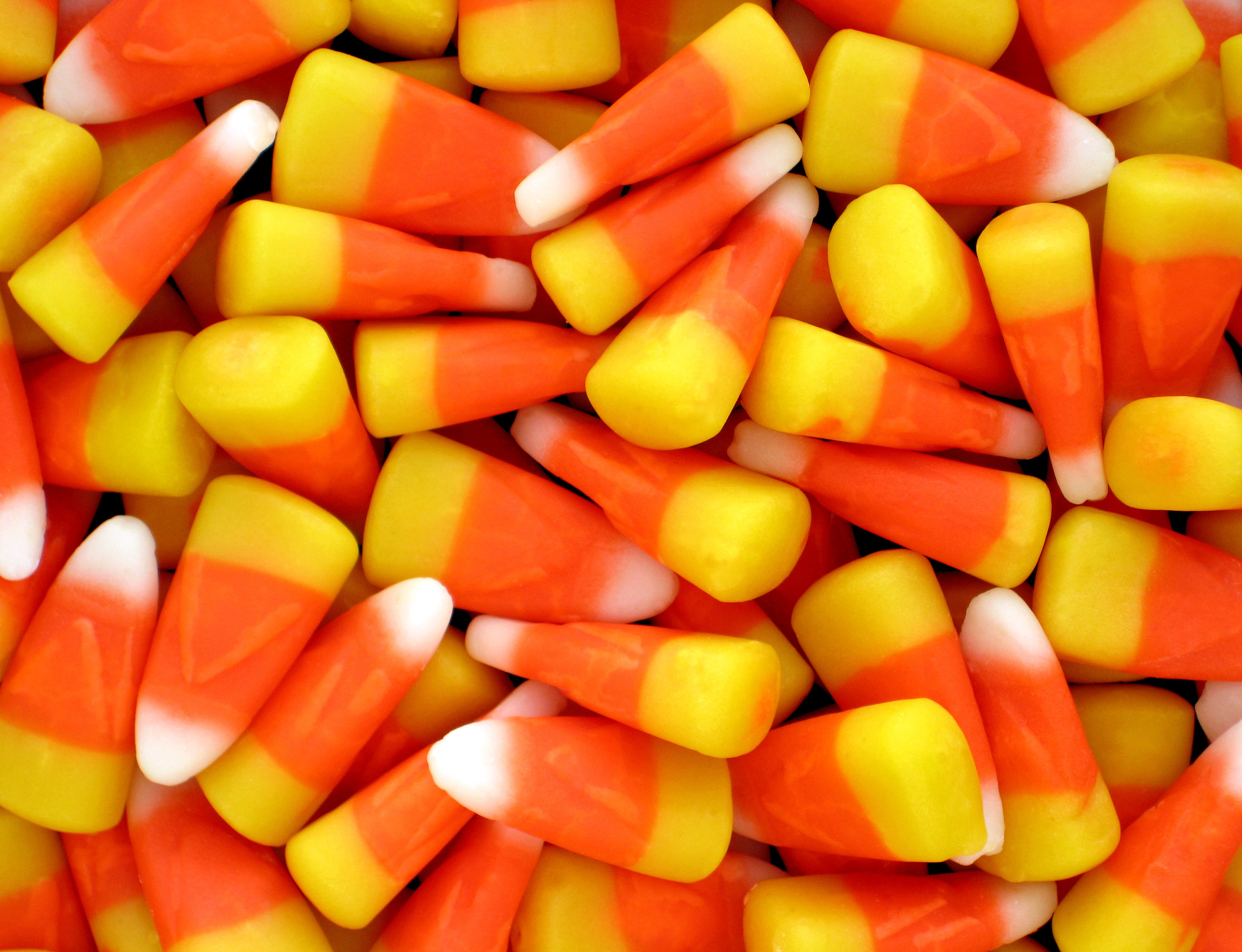 Halloween Candy Corn  Can You Grow Candy Corn