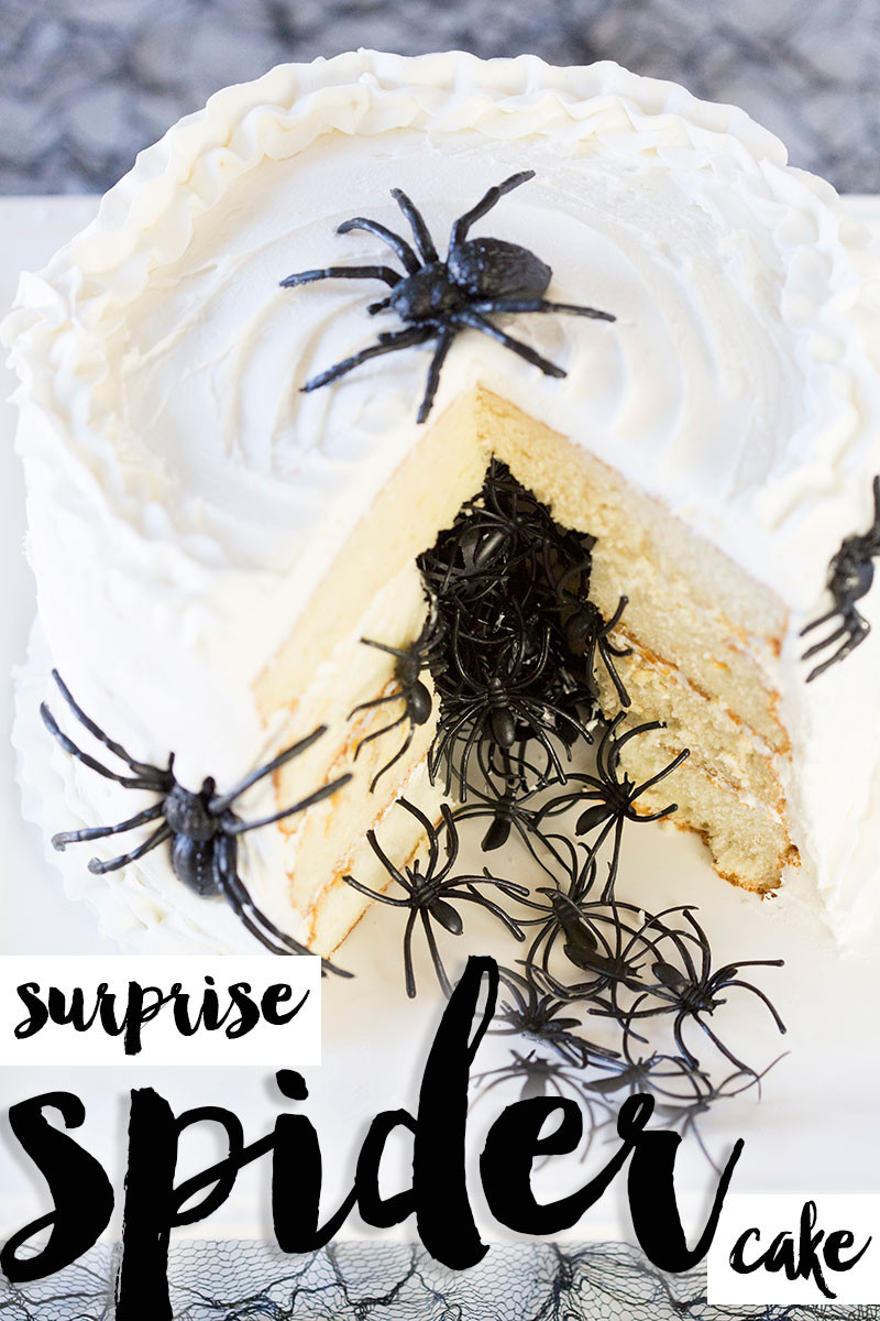 Halloween Spider Cakes  Halloween Spider Cake DIY Tutorial & Recipe