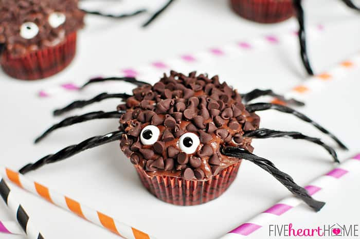 Halloween Spider Cupcakes  Spider Cupcakes for Halloween
