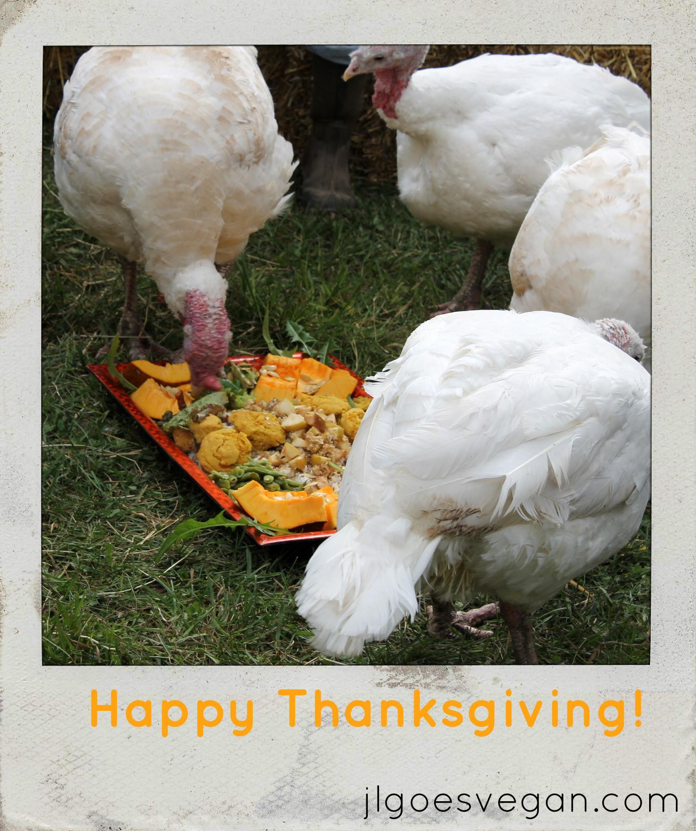 Happy Thanksgiving Vegetarian  Happy Vegan Thanksgiving JL Fields