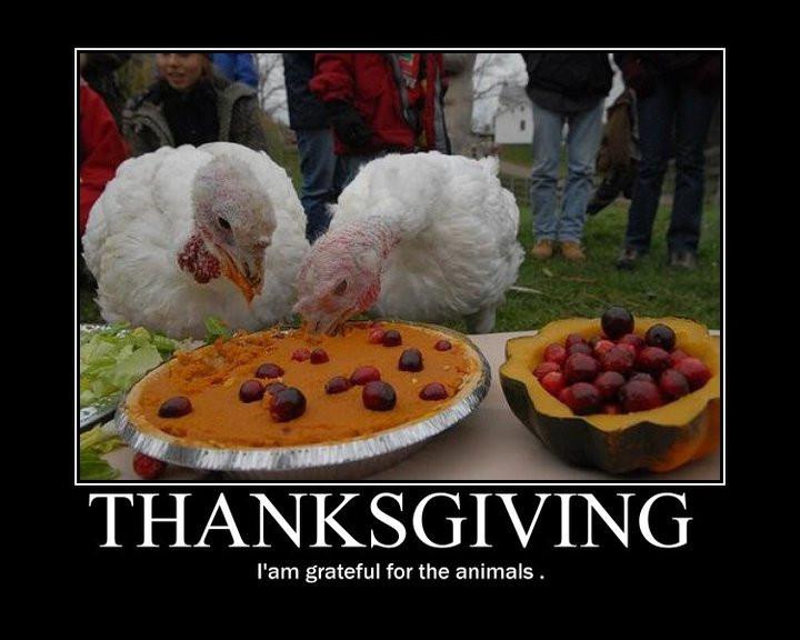Happy Vegan Thanksgiving  A Thanksgiving Day Prayer
