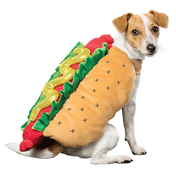Hot Dog Halloween Costumes For Dogs  Thrills & Chills™ Halloween Hot Dog Costume