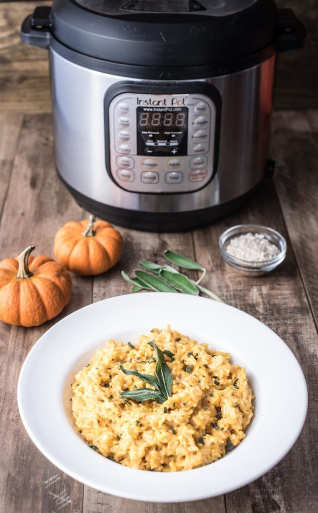 Instant Pot Fall Recipes  Recipe Round up 15 Instant Pot Recipes for Autumn