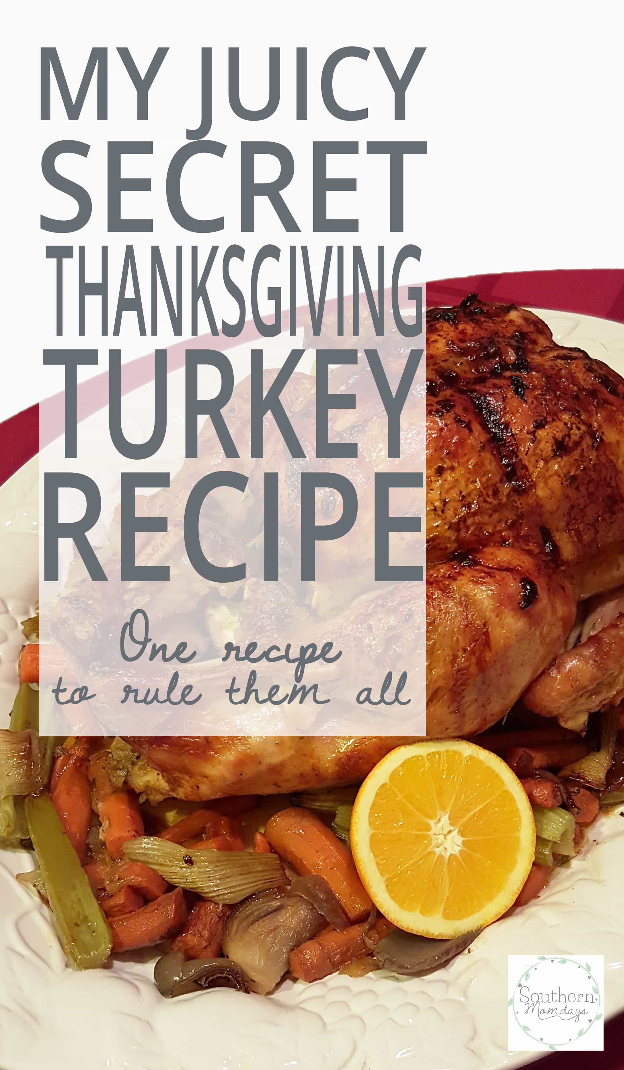 Juicy Thanksgiving Turkey Recipe  My Juicy Secret Thanksgiving Turkey Recipe Southern Momdays