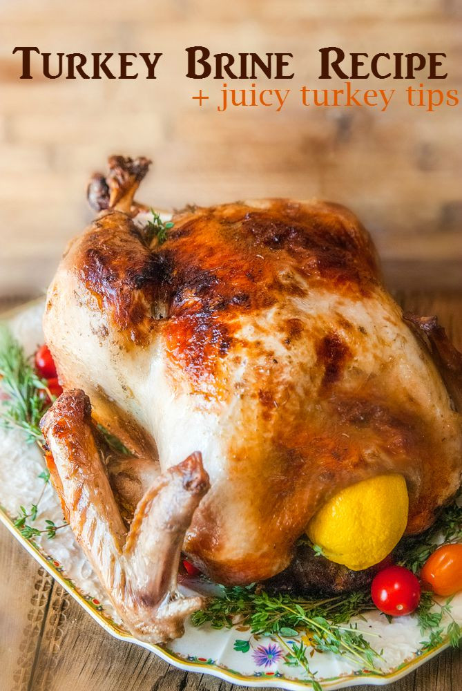 Juicy Thanksgiving Turkey Recipe  Citrus and Herb Turkey Brine Recipe