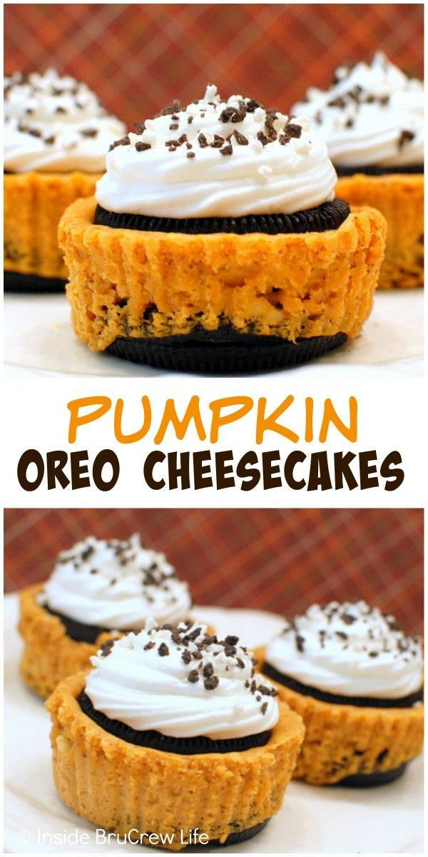 Mini Fall Desserts  559 best images about Cheesecake Heaven on Pinterest