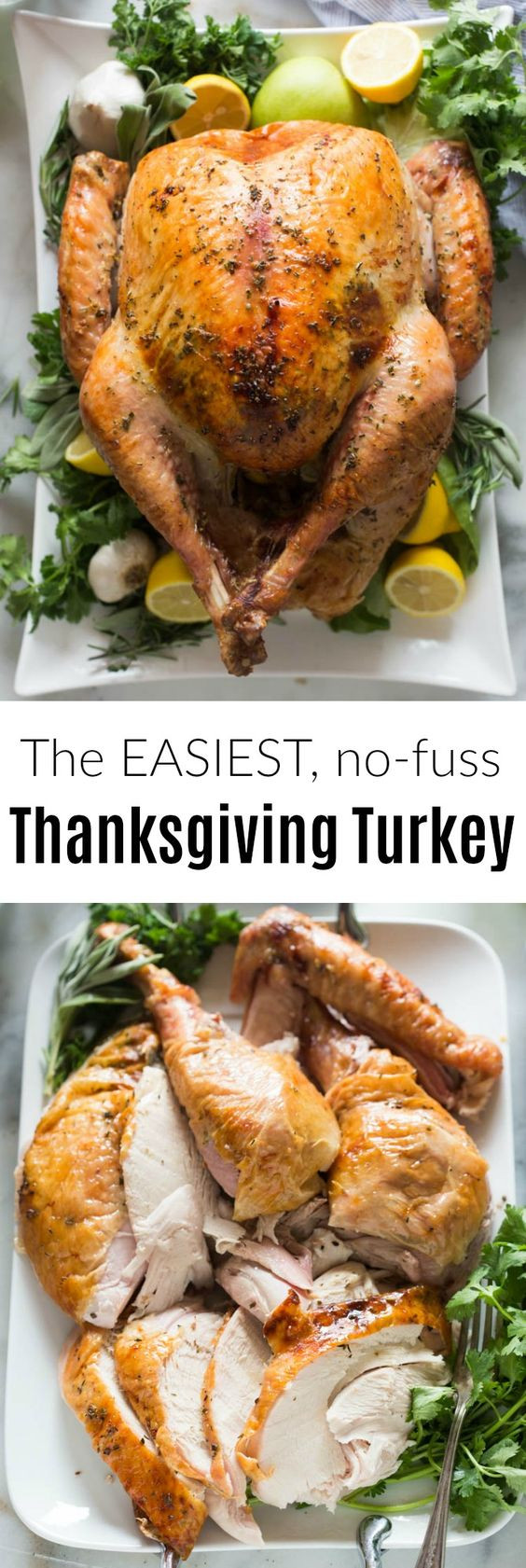 No Turkey Thanksgiving  20 Thanksgiving Turkey Recipes For The Perfect Roast The