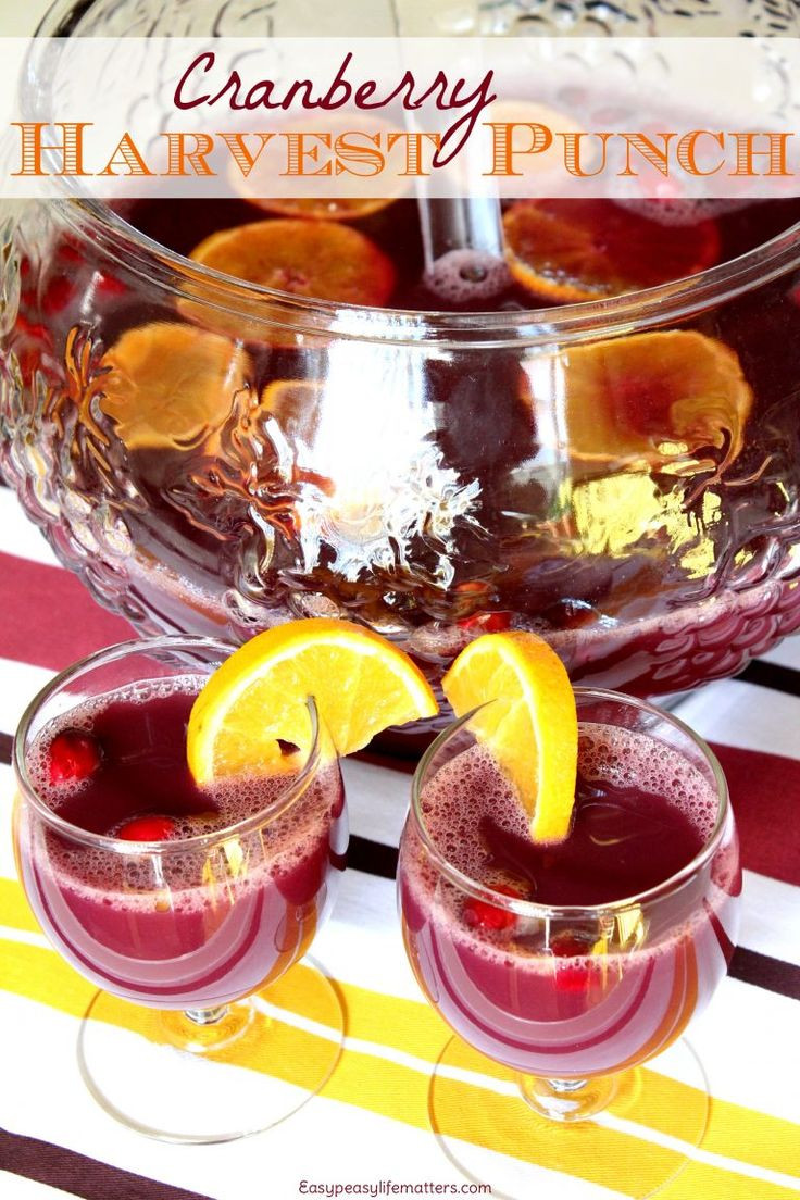Non Alcoholic Drinks For Thanksgiving  1000 ideas about Non Alcoholic Punch on Pinterest