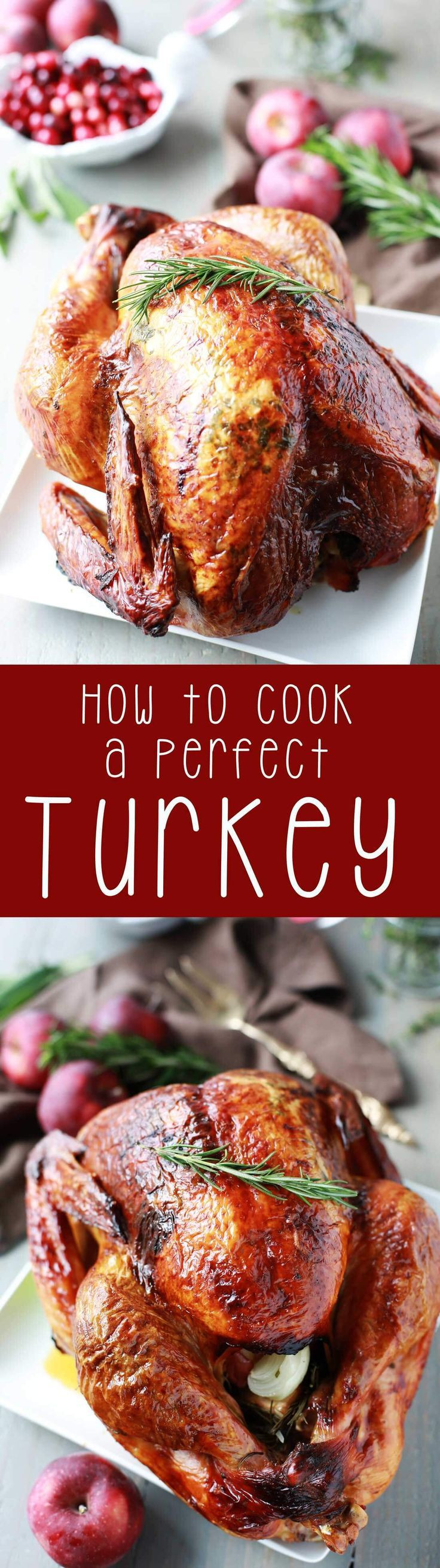 Perfect Thanksgiving Turkey  How to Cook a Perfect Turkey Recipe
