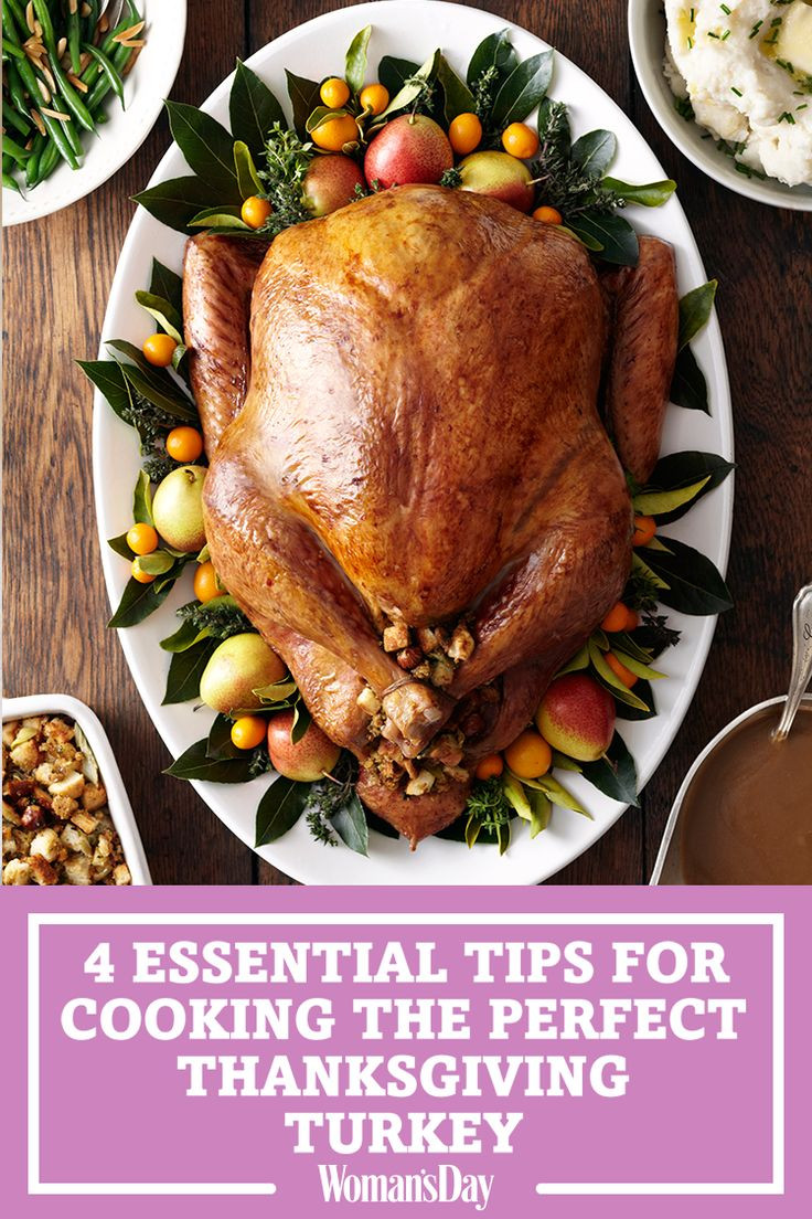 Perfect Thanksgiving Turkey  1019 best images about Thanksgiving Ideas & Recipes on