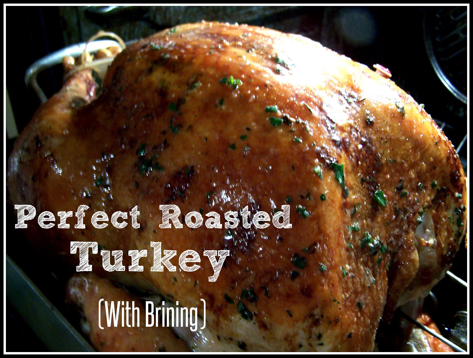 Perfect Thanksgiving Turkey  Go Ahead Take A Bite Perfect Roasted Turkey With