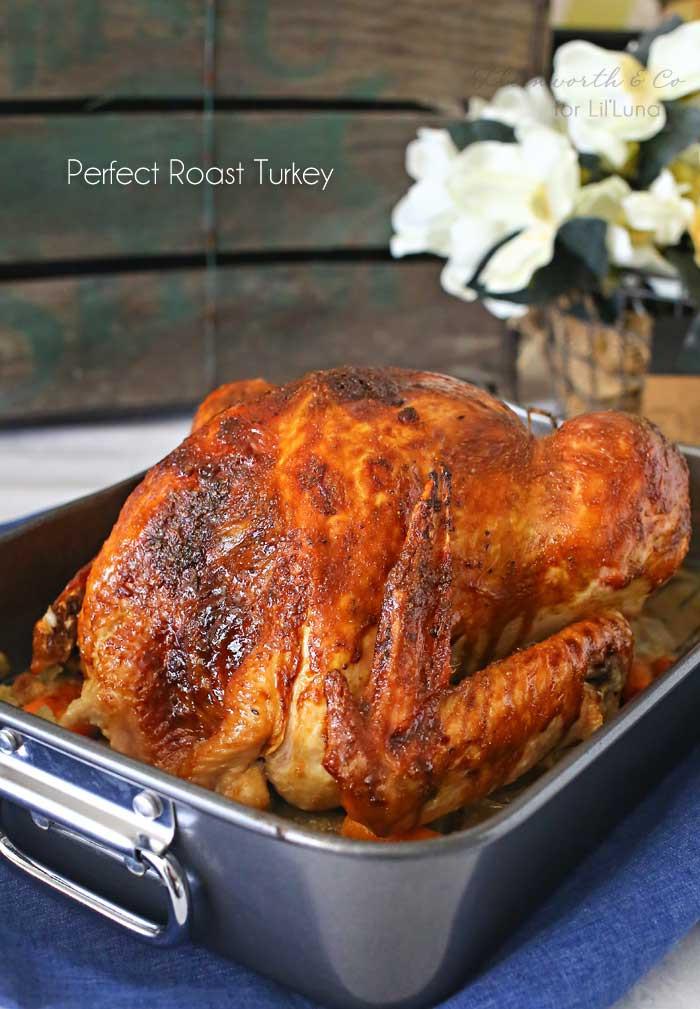 Perfect Thanksgiving Turkey  How to Roast a Turkey best recipe Lil Luna