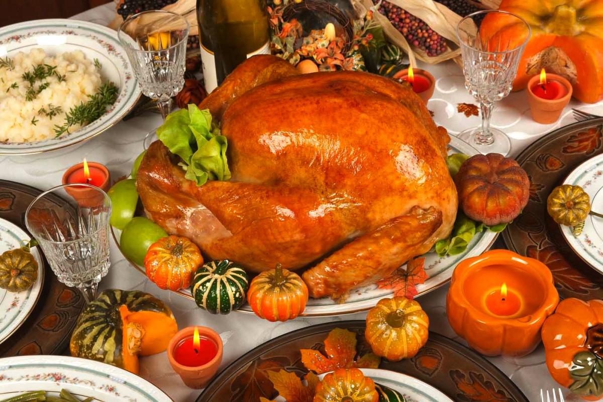 Picture Of Thanksgiving Turkey  turkeys