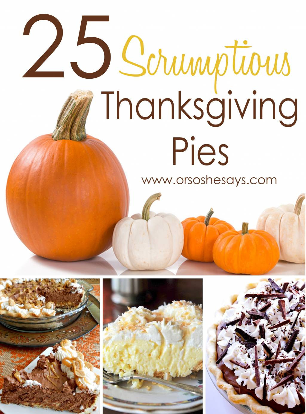 Pies For Thanksgiving  25 Scrumptious Thanksgiving Pies she Mariah so she