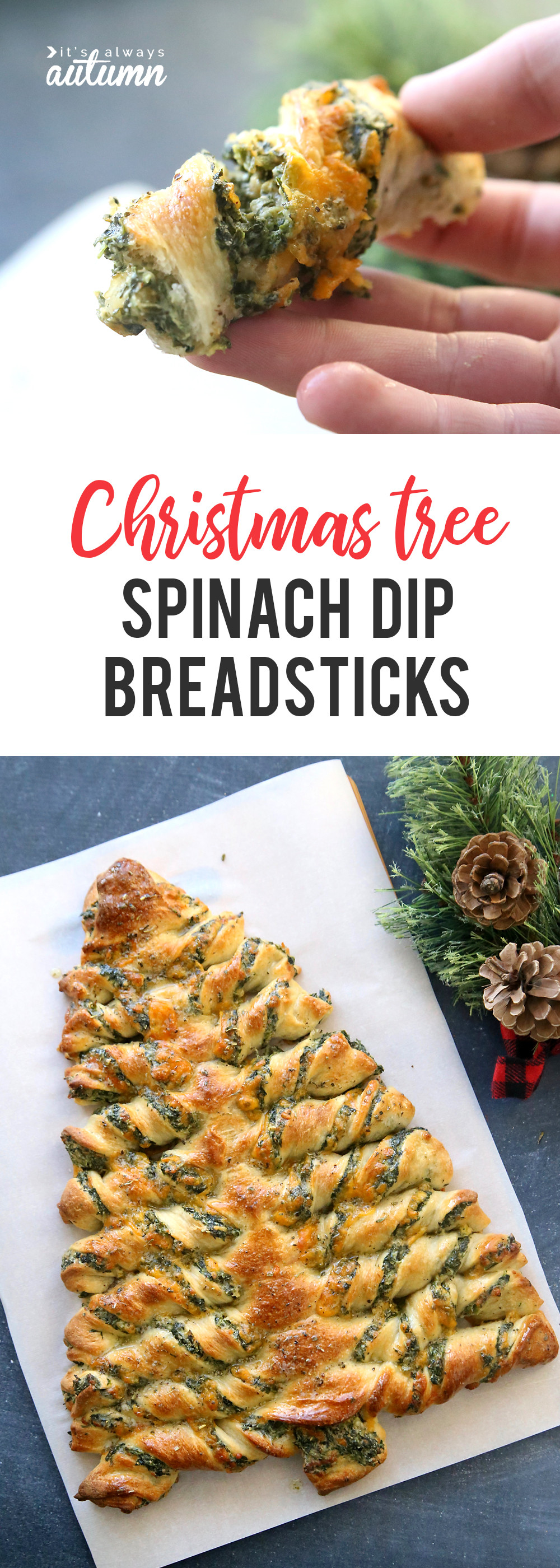Pizza Dough Spinach Dip Christmas Tree  Christmas tree spinach dip breadsticks It s Always Autumn