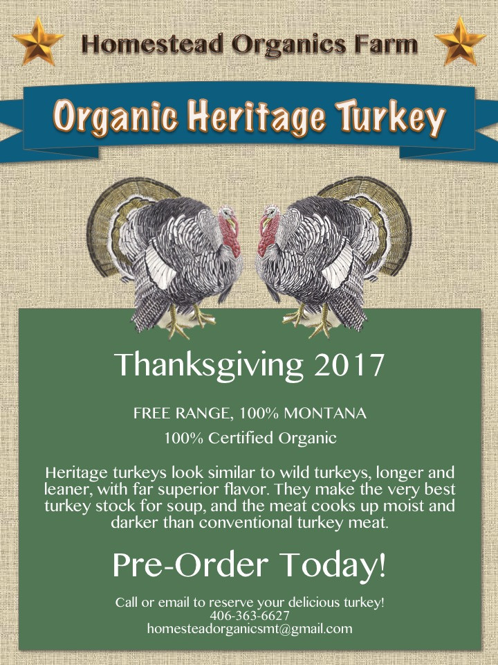 Pre Order Thanksgiving Turkey  Thanksgiving Turkey Pre order Today
