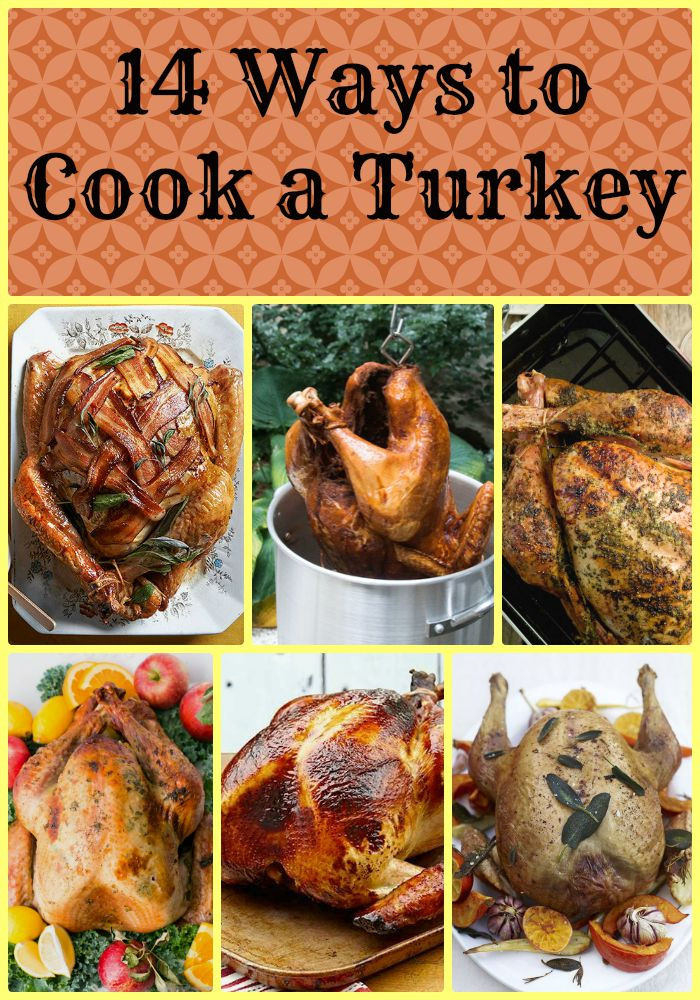 Prepare Thanksgiving Turkey  14 Different Ways to Cook a Turkey Made From Pinterest