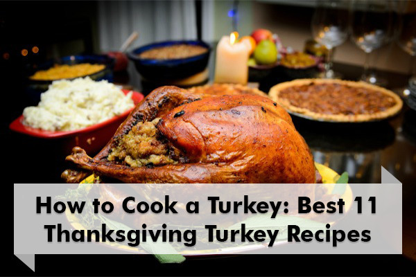 Prepare Turkey For Thanksgiving  How to Cook a Turkey 11 Best Thanksgiving Turkey Recipes
