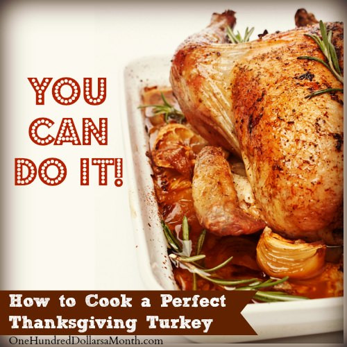 Prepare Turkey For Thanksgiving  How to Cook a Perfect Thanksgiving Turkey e Hundred