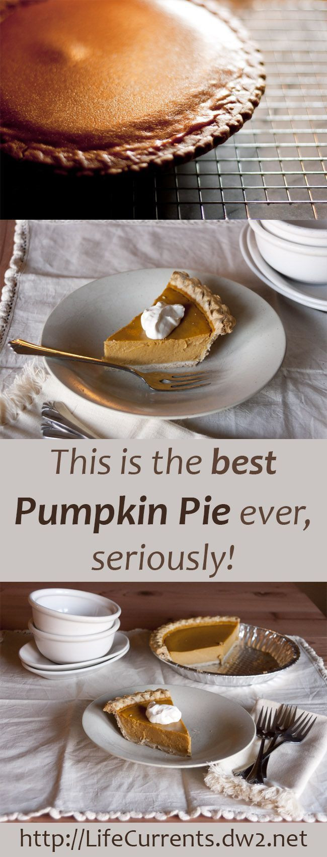 Pumpkin Pie Thanksgiving  17 Best images about pies on Pinterest