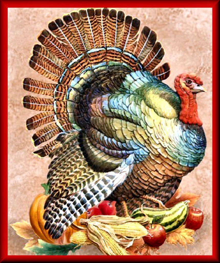 Thanksgiving 2019 Turkey  Thanksgiving Turkey gobblegobble