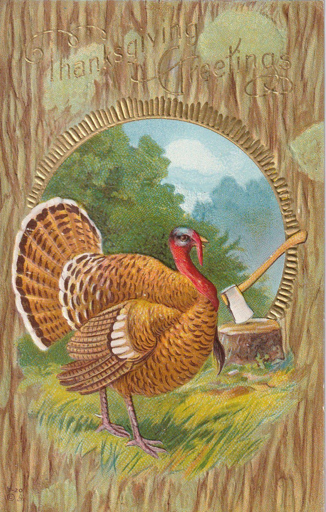 Thanksgiving 2019 Turkey  Fat Thanksgiving Turkey E Nash Postcard c 1900s en