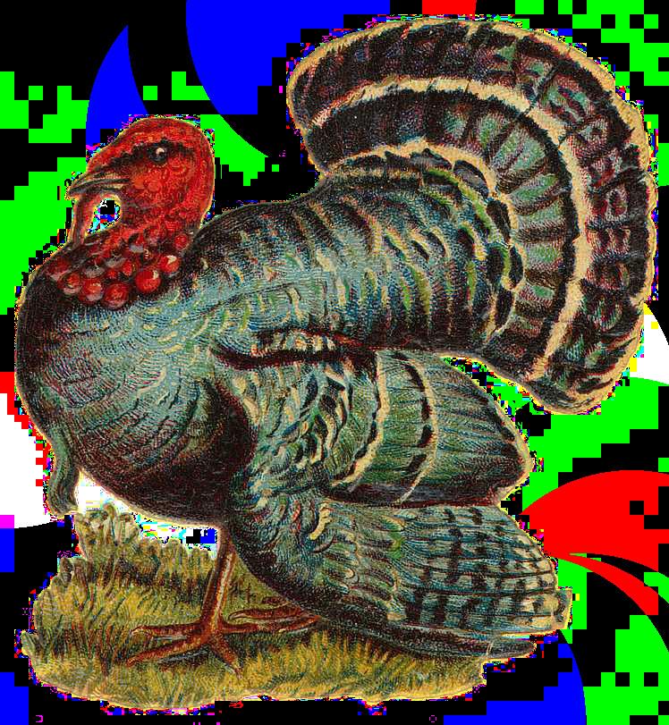 Thanksgiving 2019 Turkey  turkey Craft Thanksgiving in 2019
