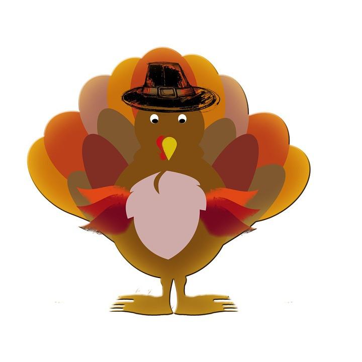 Thanksgiving Cartoon Turkey  Turkey Thanksgiving Cartoon · Free image on Pixabay