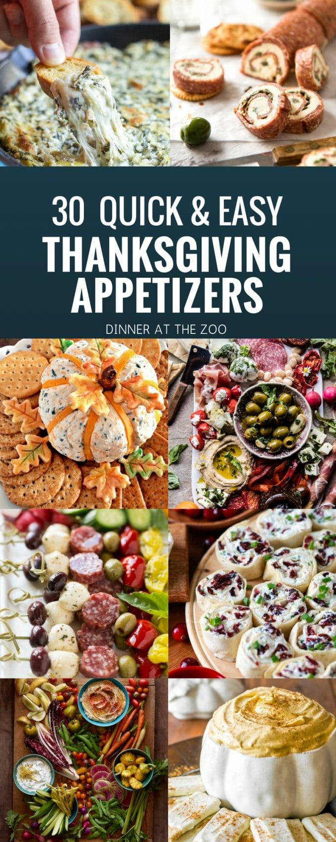 Thanksgiving Dinner Appetizers  30 Thanksgiving Appetizer Recipes Dinner at the Zoo